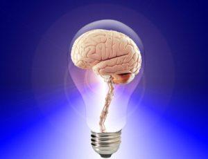 brain-20424